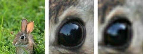 example of digital vs optical